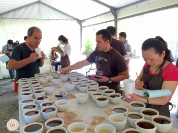 Cupping in the big pool. Sharing table with Willem Boot, Dr. Maria Ruiz & Gabriela Figueroa-Hueck